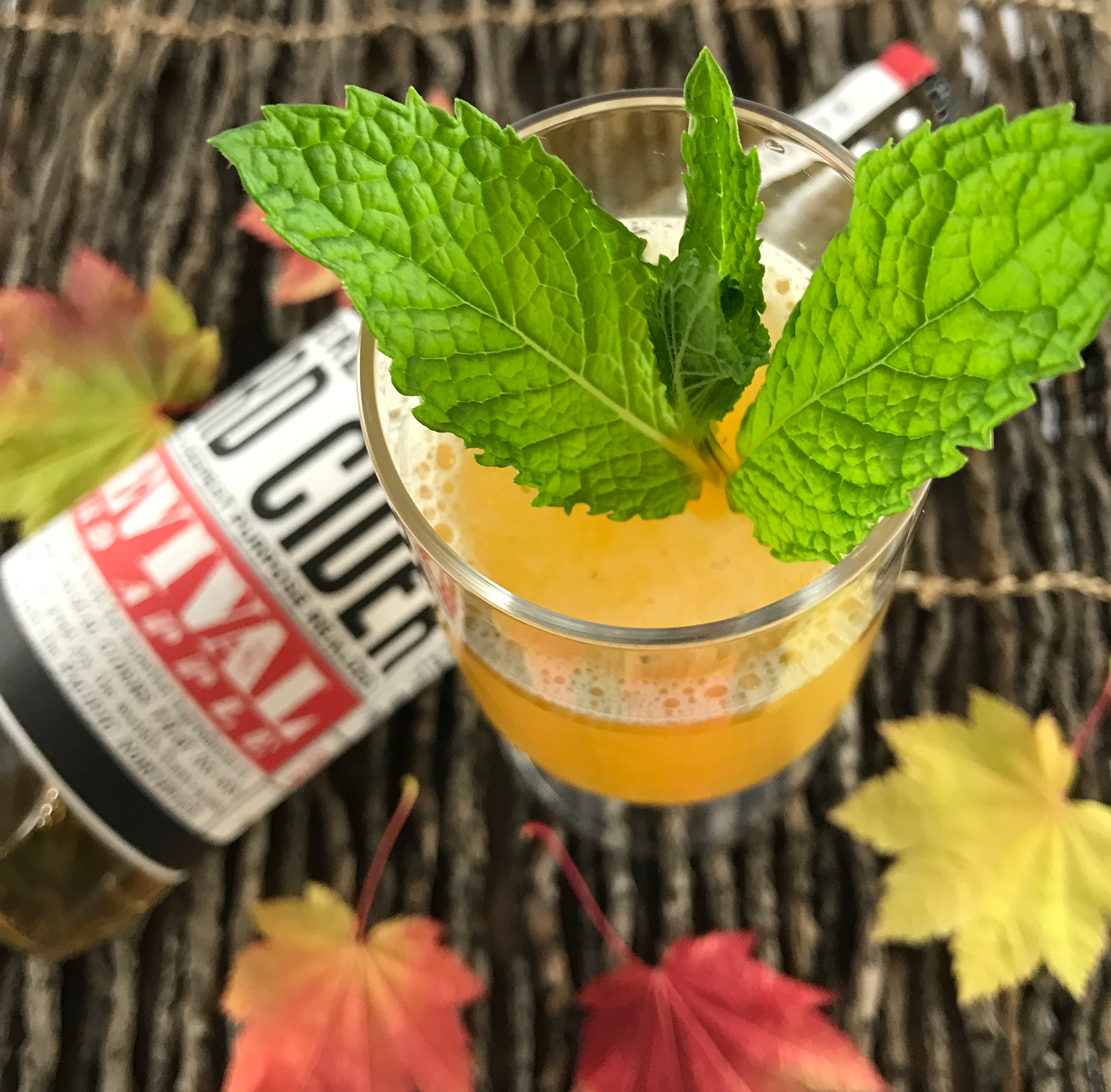 Apple Cider Mint Cocktail Recipe Perfect For The Holidays