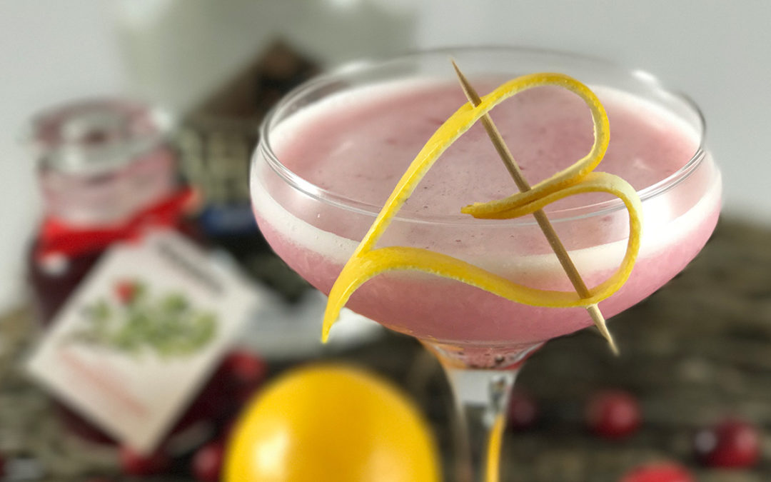 Cranberry Gin Sour Cocktail